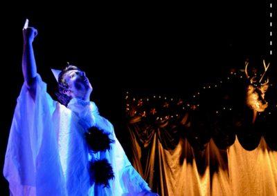 LE CARNAVAL DES SOMNAMBULES # Théâtre Musical